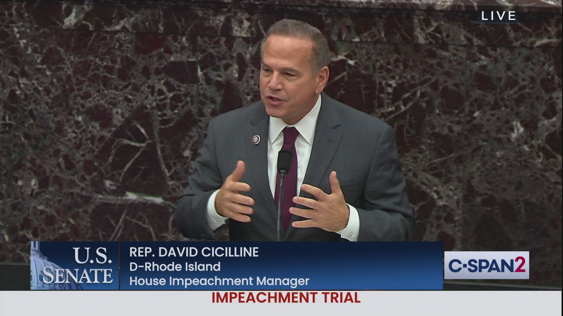 Video : Corruption of Impeachment manager Cicilline
