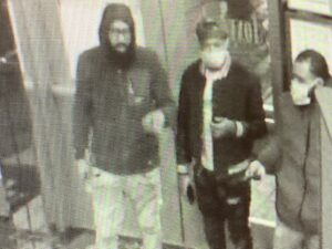 Pictures: Foxy Lady suspects